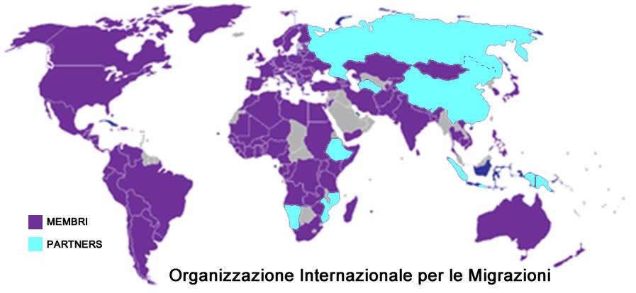 Organismi internazionali legati ai processi migratori